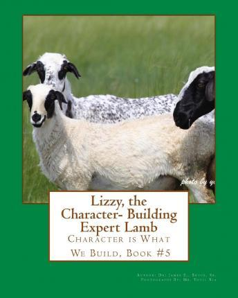 Lizzy the Character- Building Expert Lamb
