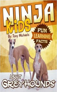 Fun Learning Facts about Greyhounds