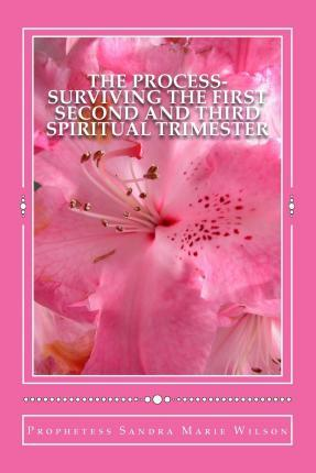 The Process-Surviving the First Second and Third Spiritual Trimester