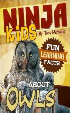 Fun Learning Facts about Owls
