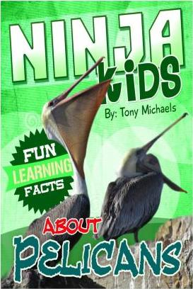 Fun Learning Facts about Pelicans