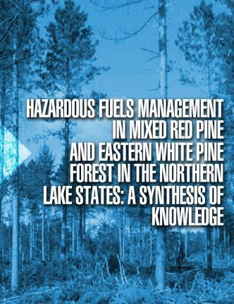 Hazardous Fuels Management in Mixed Red Pine and Eastern White Pine Forest in the Northern Lake States
