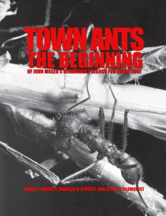 Town Ants