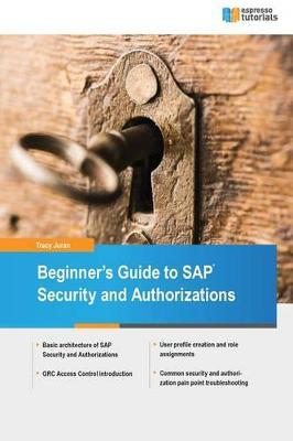Beginner's Guide to SAP Security and Authorizations