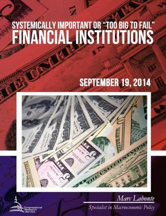 """Systemically Important or """"Too Big to Fail"""" Financial Institutions"""