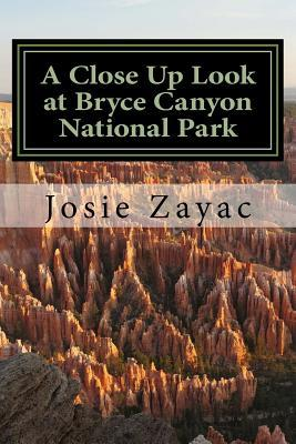 A Close Up Look at Bryce Canyon National Park