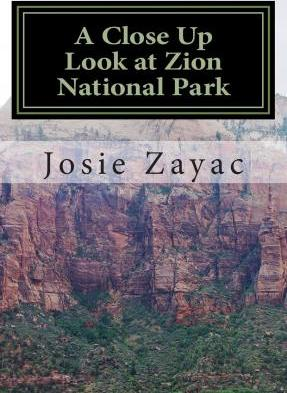A Close Up Look at Zion National Park