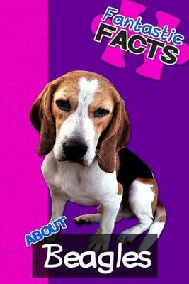 Fantastic Facts about Beagles