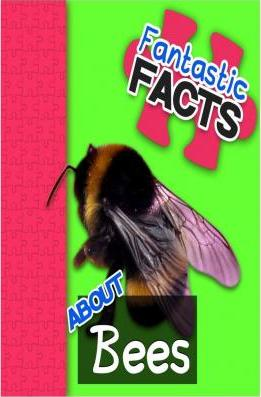 Fantastic Facts about Bees