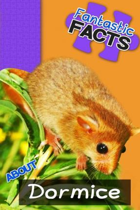 Fantastic Facts about Dormice