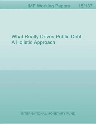 What Really Drives Public Debt