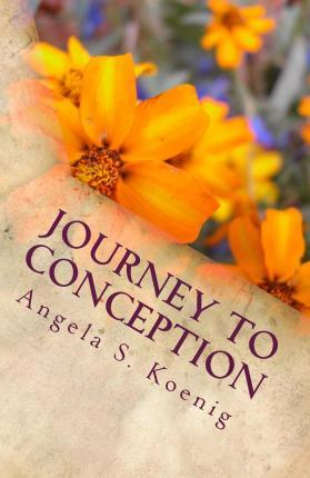 Journey to Conception