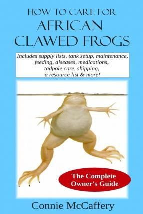 How to Care for African Clawed Frogs