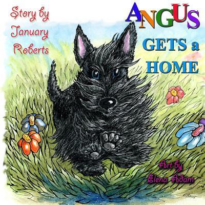 Angus Gets a Home