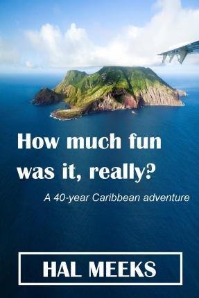 How Much Fun Was It, Really?