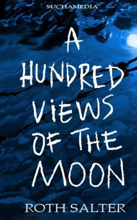 A Hundred Views of the Moon