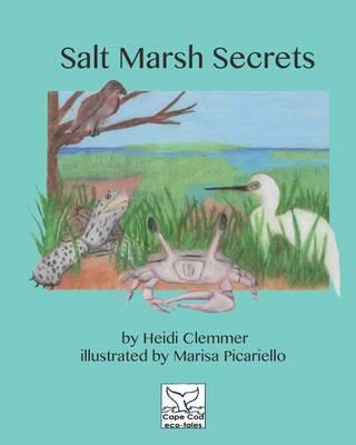 Salt Marsh Secrets