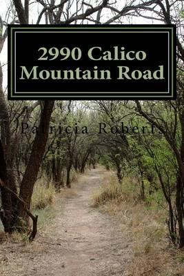 2990 Calico Mountain Road