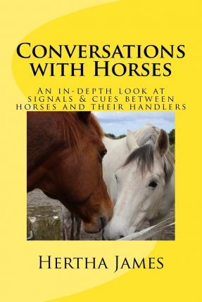 Conversations with Horses