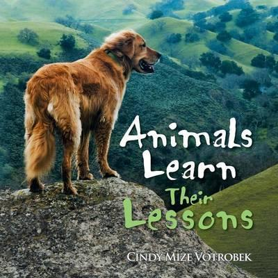 Animals Learn Their Lessons