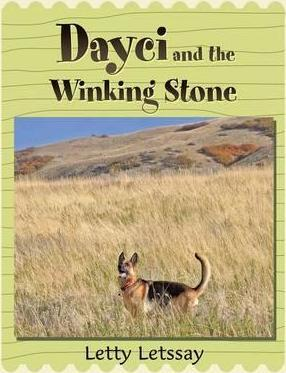 Dayci and the Winking Stone