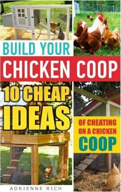 Build Your Chicken COOP