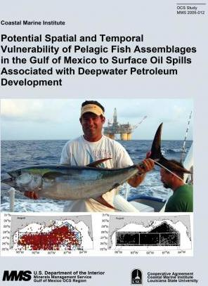 Potential Spatial and Temporal Vulnerability of Pelagic Fish Assemblages in the Gulf of Mexico to Surface Oil Spills Associated with Deepwater Petroleum Development