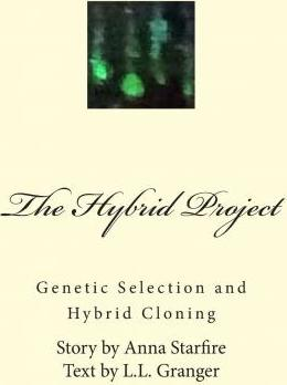 The Hybrid Project