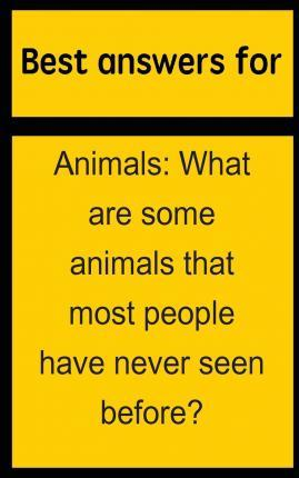 Best Answers for Animals