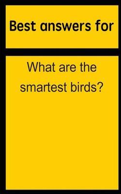 Best Answers for What Are the Smartest Birds?