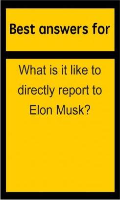 Best Answers for What Is It Like to Directly Report to Elon Musk?