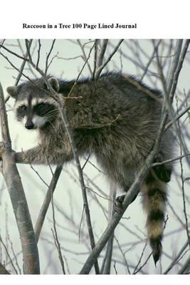 Raccoon in a Tree 100 Page Lined Journal