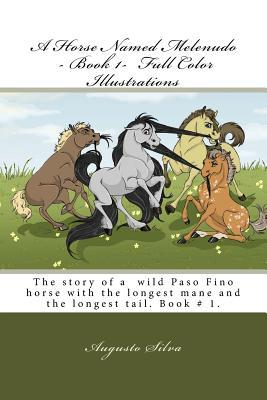 A Horse Named Melenudo - Book 1- Full Color Illustrations