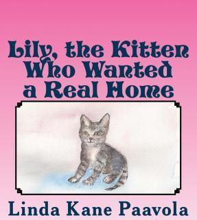 Lily, the Kitten Who Wanted a Real Home