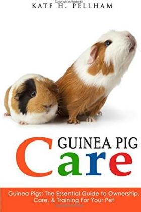 Guinea Pigs : The Essential Guide To Ownership, Care, & Training For Your Pet