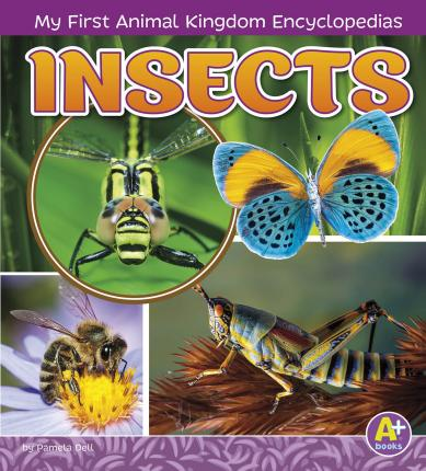 My First Animal Kingdom Encyclopedias: Insects