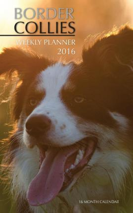Border Collies Weekly Planner 2016  16 Month Calendar