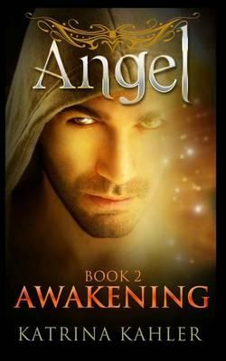 Angel Book 2 - Awakening  (Paranormal Romance, Teen and Young Adult)