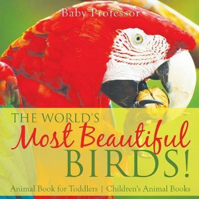 The World S Most Beautiful Birds Animal Book For Toddlers