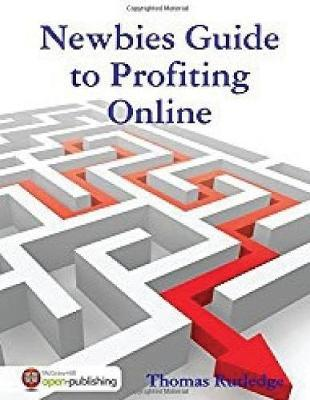 Newbie Guide to Profiting Online