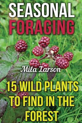 Seasonal Foraging: 15 Wild Plants to Find in the Forest