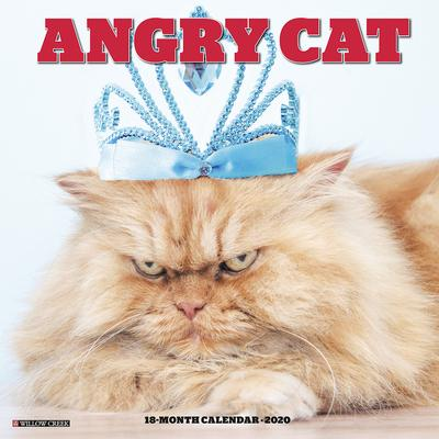 Angry Cat 2020 Square Wall Calendar