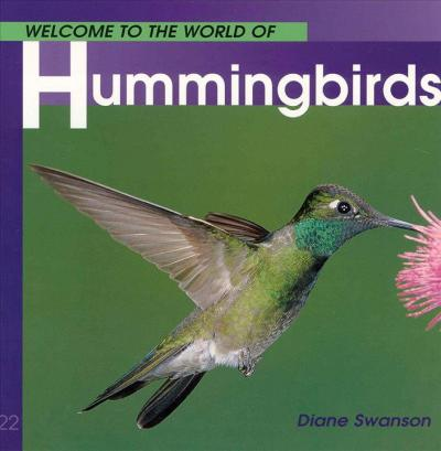 Welcome to the World of Hummingbirds