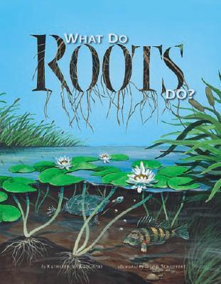 What Do Roots Do?
