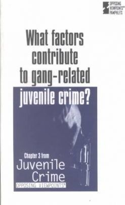 What Factors Contribute to Gang-Related Juvenile Crime