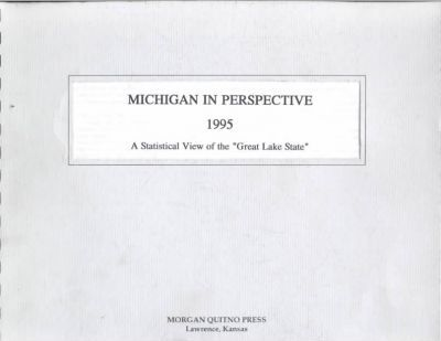 Michigan in Perspective 1995