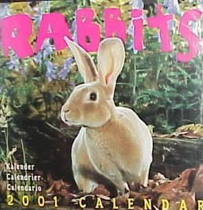 Rabbits: Wall Calendar 2001