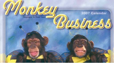 Monkey Business 2007 Calendar