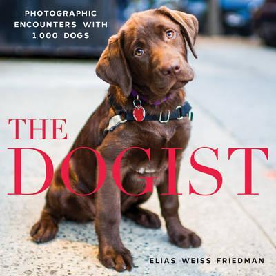The Dogist