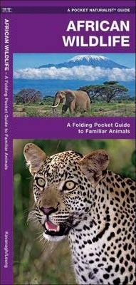 African Wildlife : A Folding Pocket Guide to Familiar Species